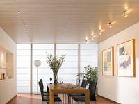 Gut gemocht Deckenpaneele aus Holz und Kunststoff verlegen, montieren und LO68